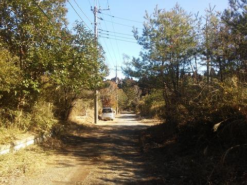 麻生新田 山林の分譲地 (22)