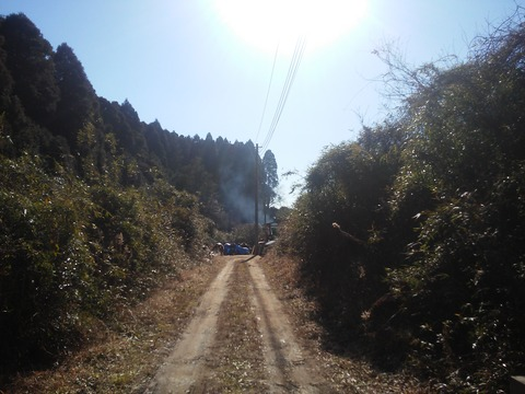 麻生新田 山林の分譲地 (18)