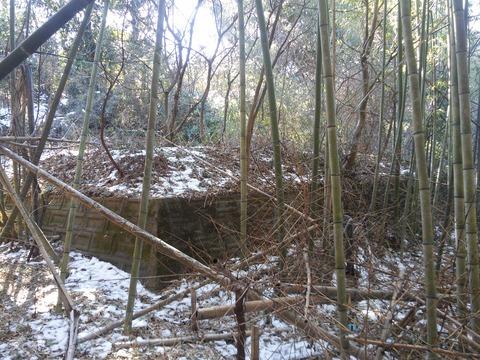 小野の放棄住宅地 (9)