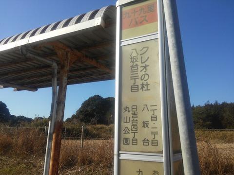 東金レイクサイドヒル八坂台 (27)