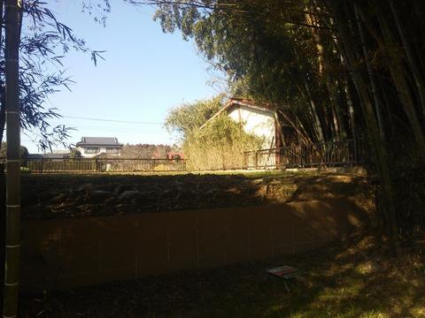 滝台 オフロード (7)