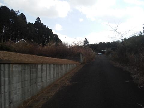 山武市埴谷 放棄住宅地 (1)
