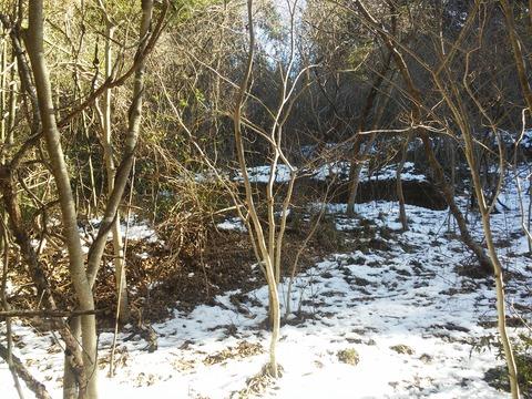 小野の放棄住宅地 (15)
