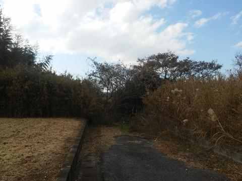 栗山川沿いの分譲地 (1)