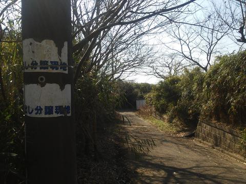 十倉 (67)