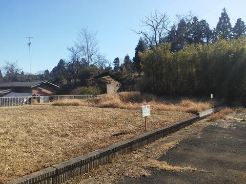 埴谷 農村の分譲地 (5)