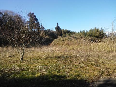 臼作の放棄住宅地 (18)