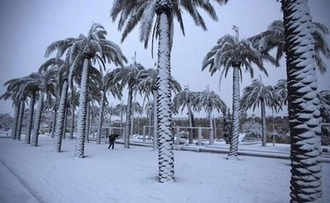 saudi-snow-05