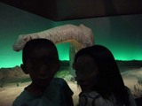 恐竜大陸2