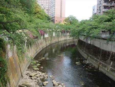 17神田川