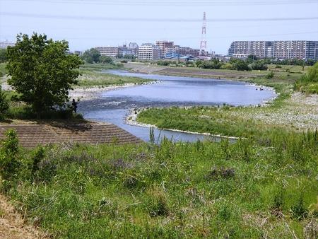 09多摩川の流れ