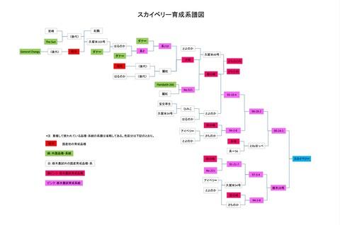スカイベリー系譜図