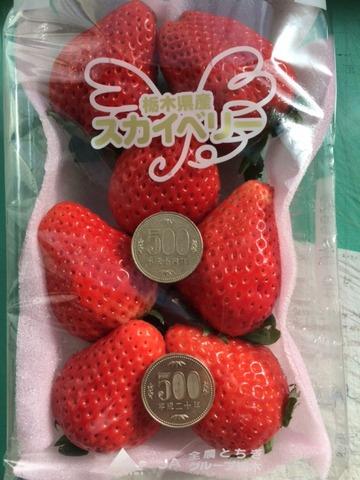 スカイベリー500円玉