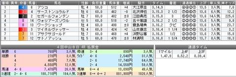 30 中山4R 結果