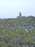 本島最北端・辺戸岬です