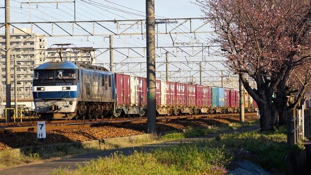 DSC02151