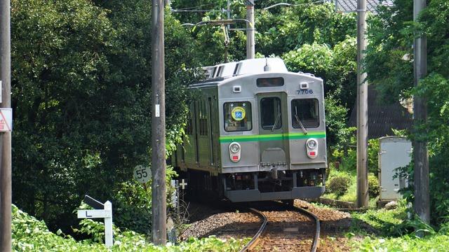 DSC03910
