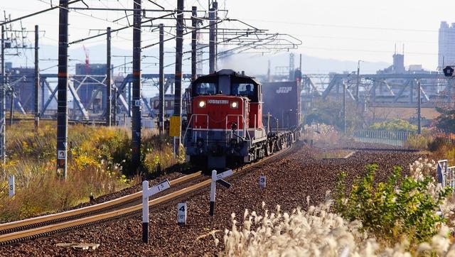 DSC06647