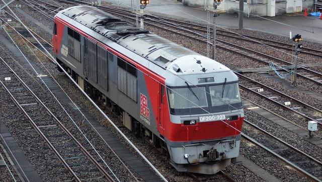 DSC06338