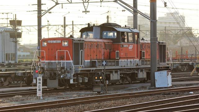 DSC08194