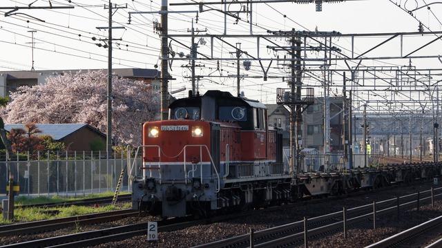 DSC06498