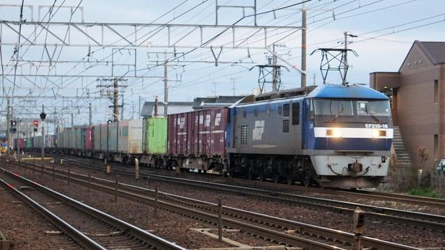 DSC09154