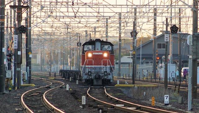 DSC08529