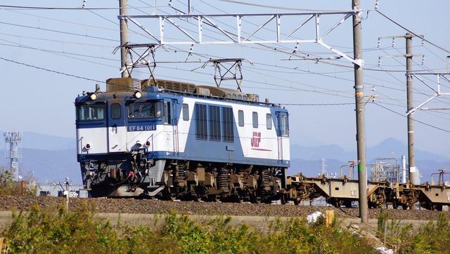 DSC05994
