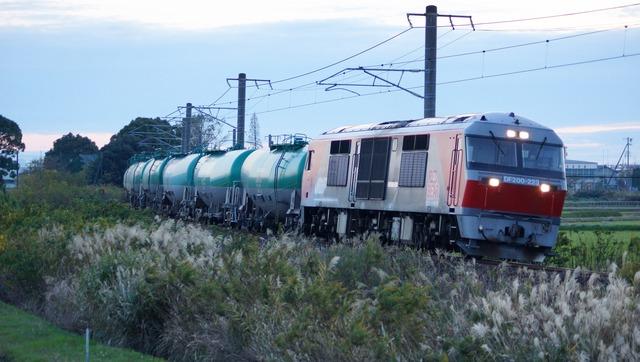 DSC07867