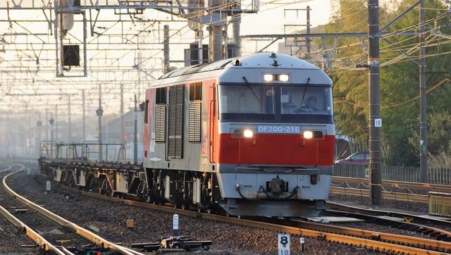 DSC05654