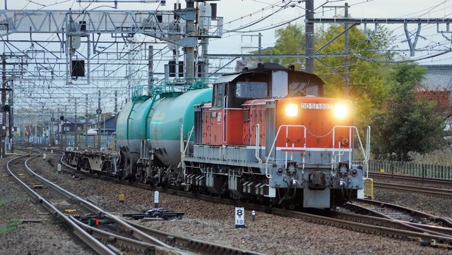 DSC06310