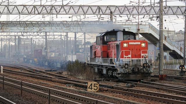 DSC08003