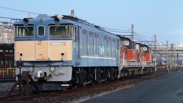 DSC08520