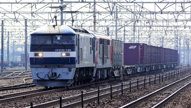 DSC08582