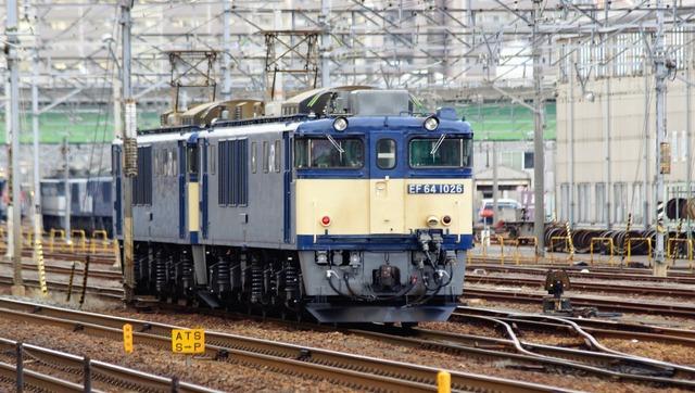 DSC07904