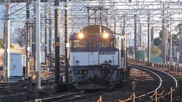 DSC07464