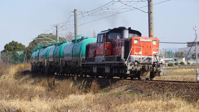 DSC06880