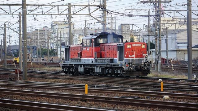 DSC07918