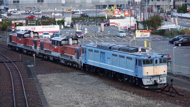 DSC06237