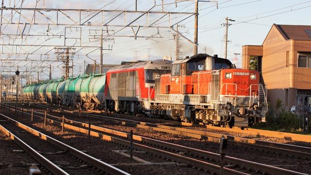 DSC07486