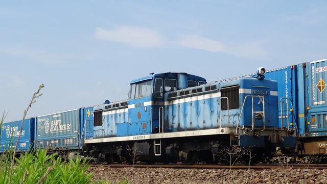 DSC07982