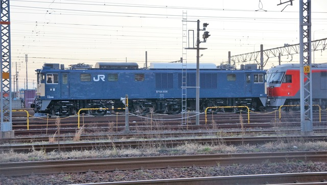 DSC05638