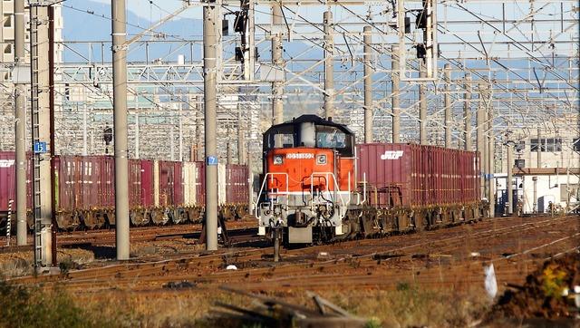 DSC06510