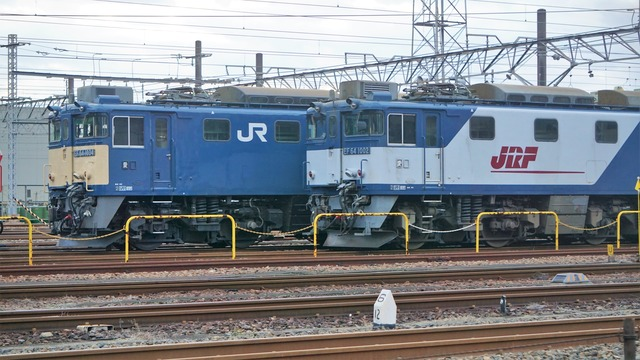 DSC00497