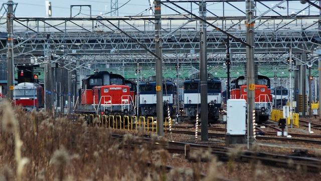 DSC01129