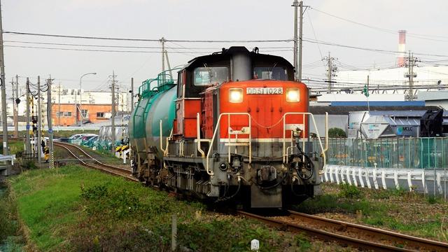 _DSC5061