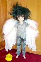 天使の羽根1