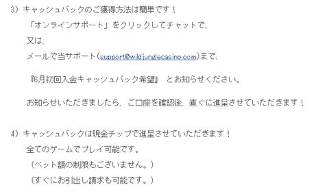 ワイルドジャングル キャッシュバックオファー! 3
