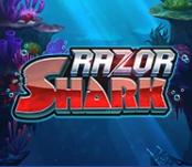 RAZOR SHARK 1