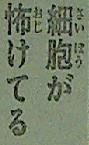 『刃牙道(バキどう)』第19話感想3